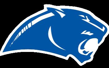 Panthers Logo